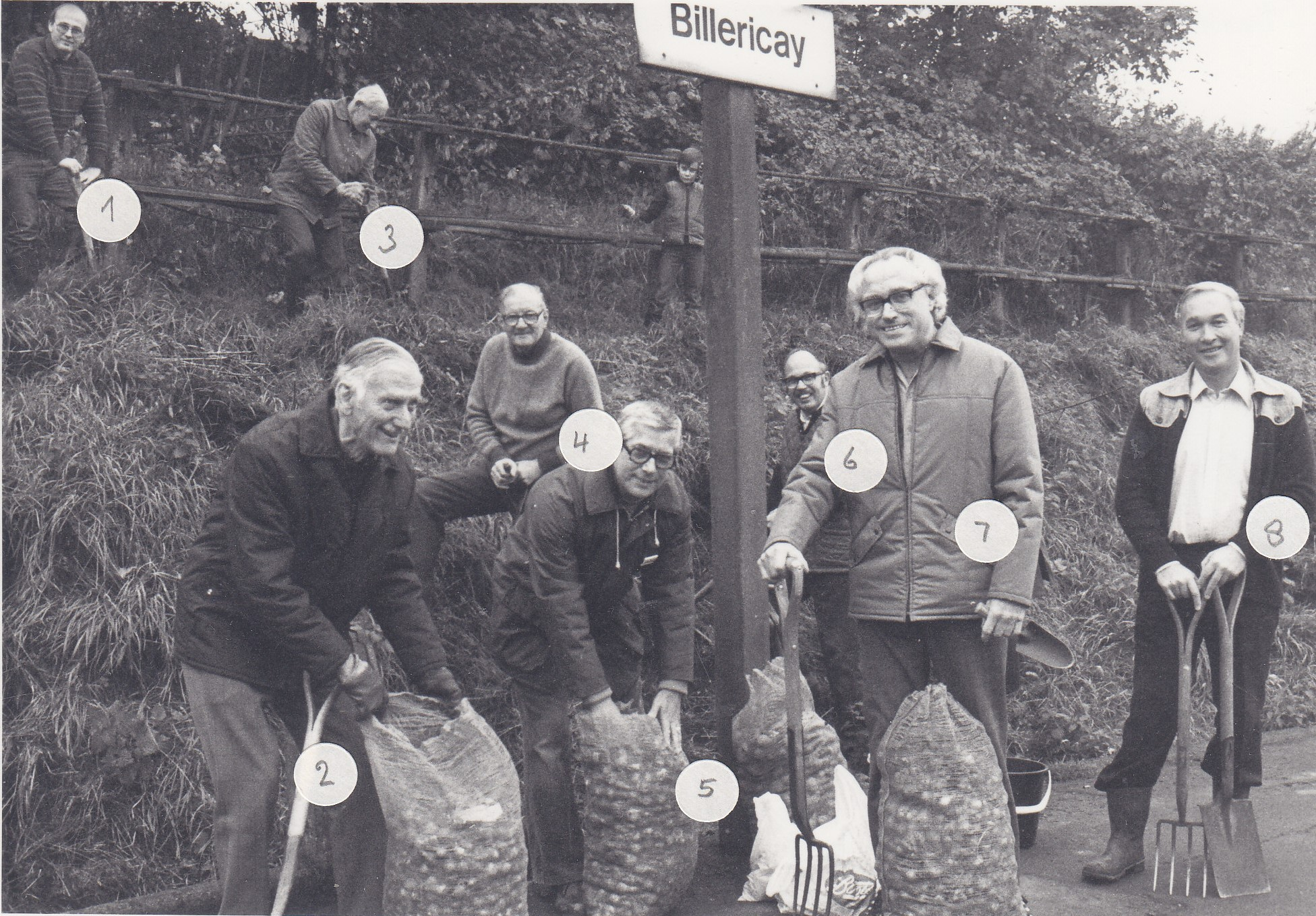 Members of Billericay Society planting bulbs