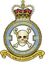 100 Squadron Crest