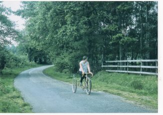 Summer in Goatsmoor Lane | David Twitchett